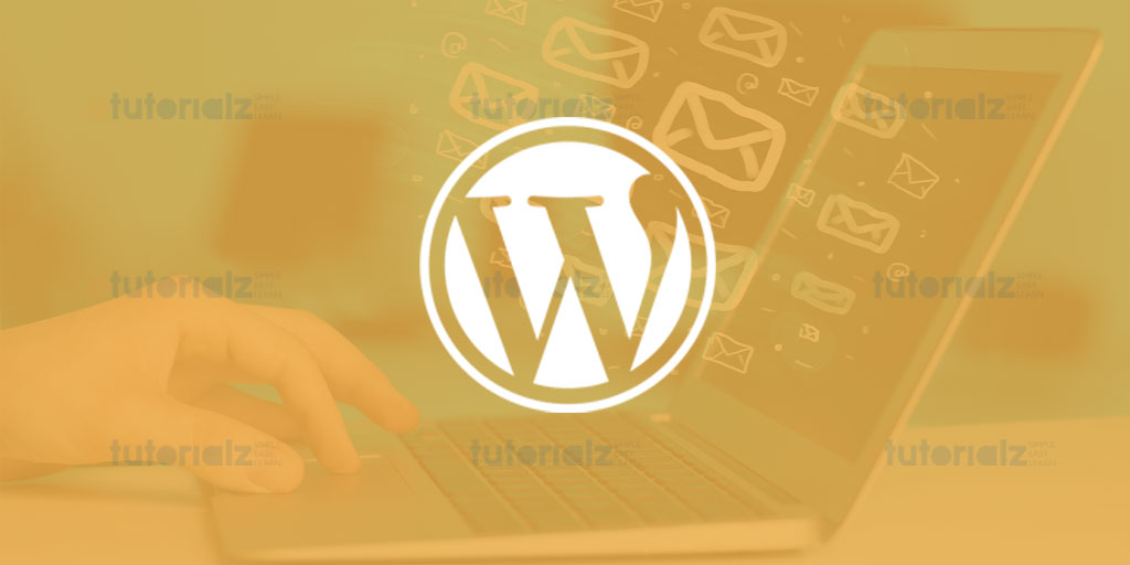 Send Email via SMTP Server in WordPress